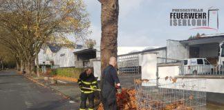 Die Feuerwehr Iserlohn wurden vom Ordnungsamt zum Laub schaufeln alarmiert. Foto: Feuerwehr Iserlohn